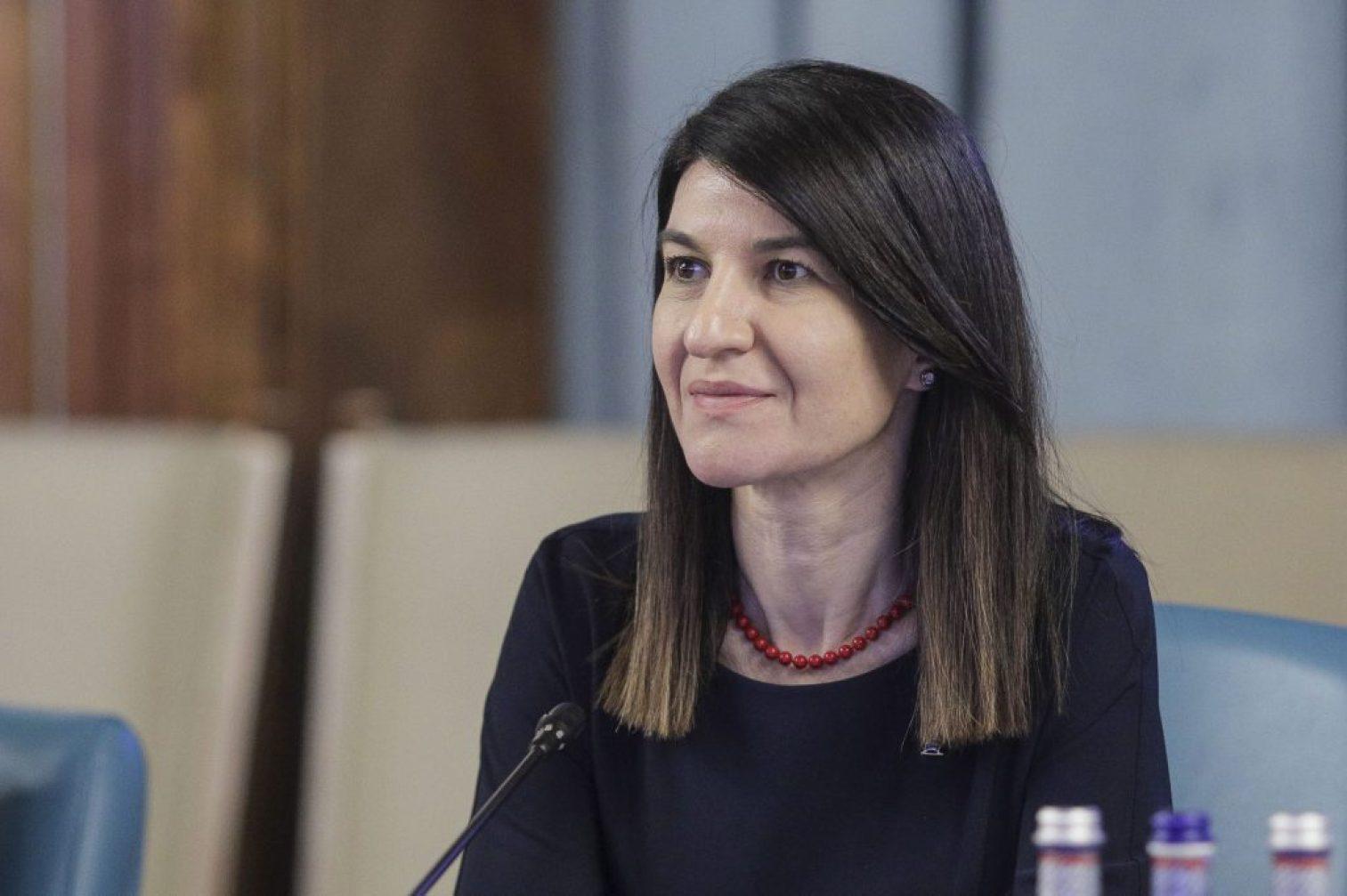 Violeta Alexandru MMPS Ministrul Muncii