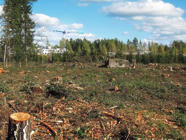 deforested, construction, outskirts