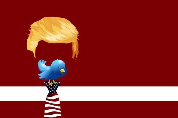 trump, twitter, bird