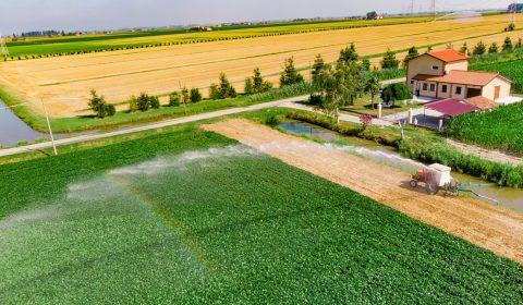 campaign, irrigation, rainbow