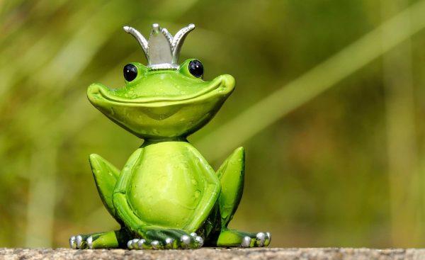 frog, frog prince, prince
