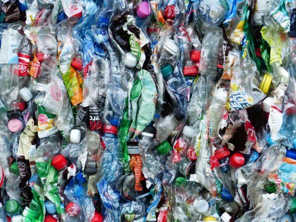 plastic bottles, bottles, recycling