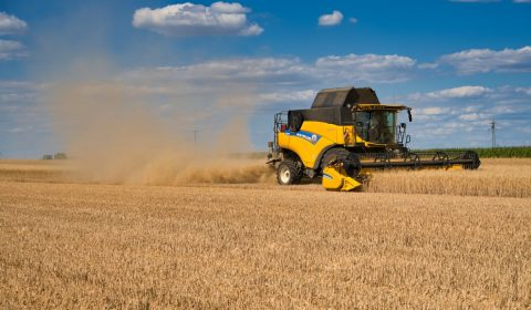 combine harvester, agriculture, wheat harvest