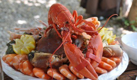 seafood platter, crustaceans, food