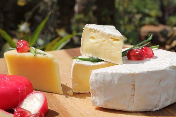 cheese, camembert, mature cheddar