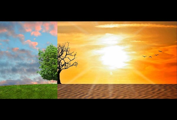 climate change, global warming, climate