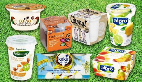 Vegan Yogurts Keep Fit Kingdom