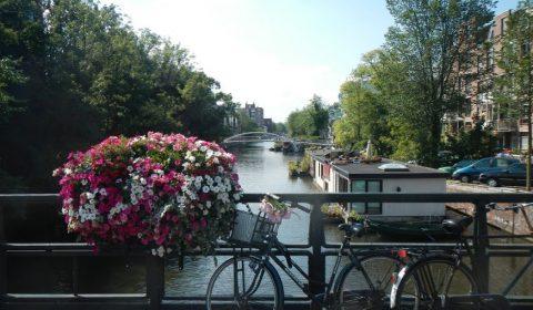 Flori Biciclete Amsterdam
