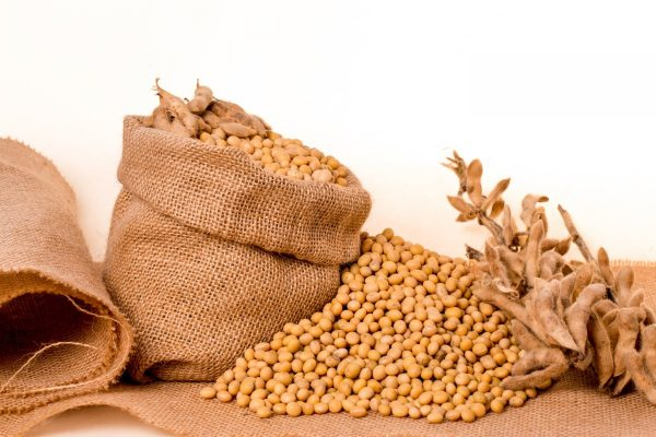 soybeans, plants, seeds