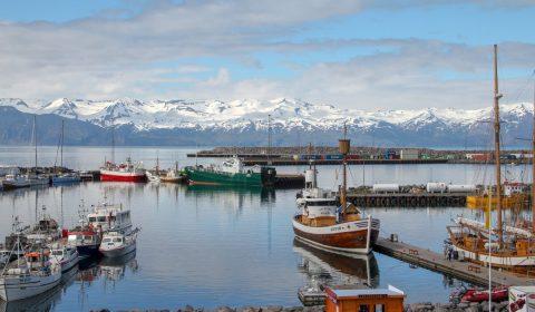husavik, iceland, port