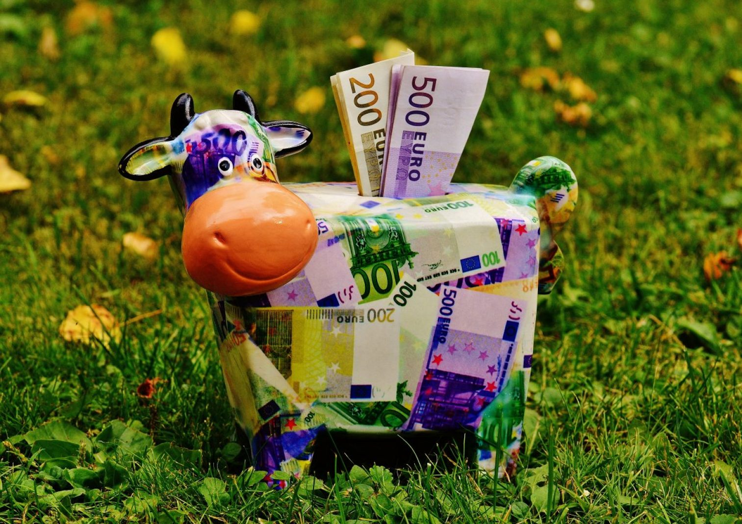 piggy bank, money, cow