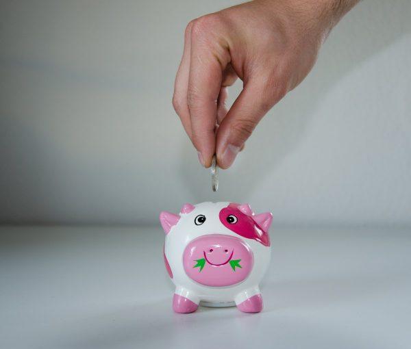 save, piggy bank, money