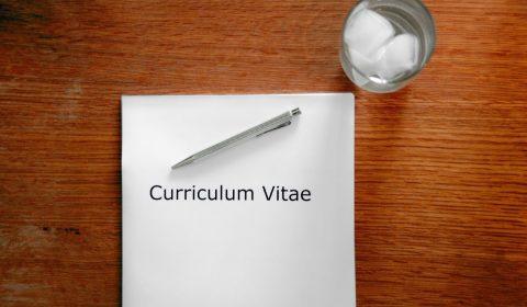 application, curriculum vitae, interview