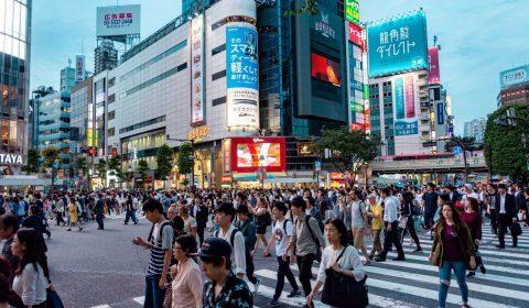 japan, travel, nature