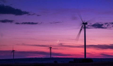 wind farm, wind, sunset