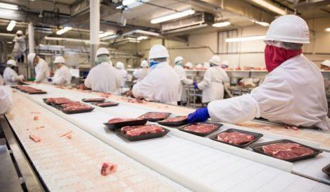 Abatoare Industria Carnii Shutterstock Euractiv
