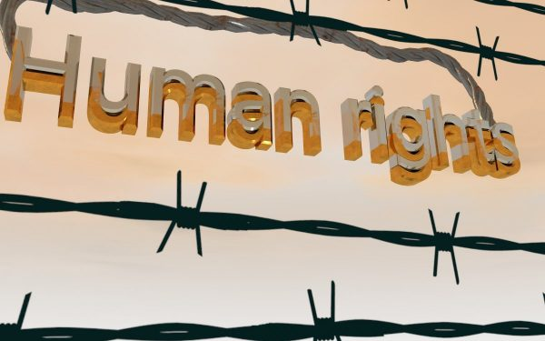 barbed wire, human rights, equality
