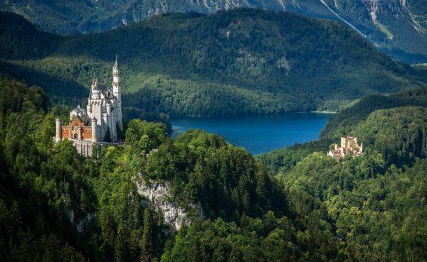 castle, tree, landscape