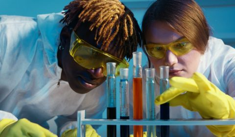 A man and a woman looking at the test tubes