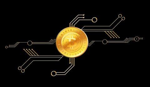 bitcoin, coin, money