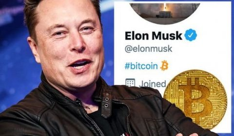 Bitcoin Price News Btc Spike Elon Musk Twitter Bio Gamestop 1390940