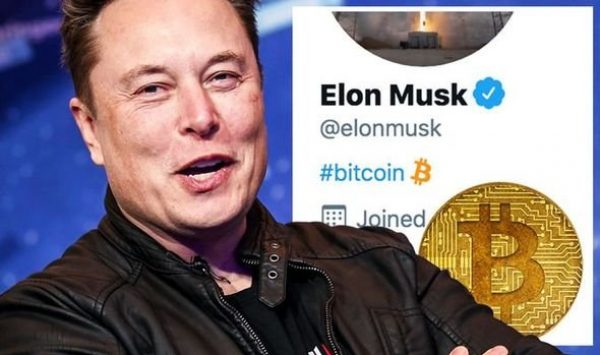 Bitcoin Price News Btc Spike Elon Musk Twitter Bio Gamestop 1390940