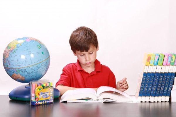 boy, reading, studying