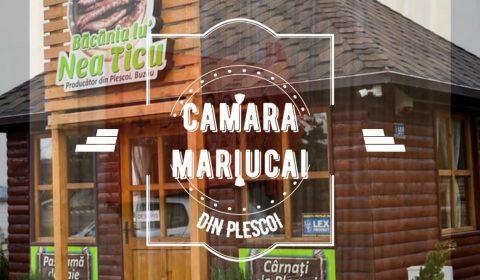 Camara Mariucai Plescoi
