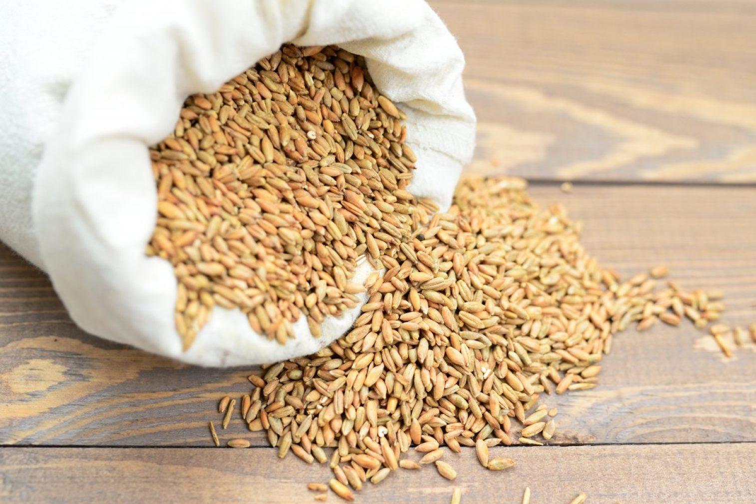 cereal grains, sack, harvest
