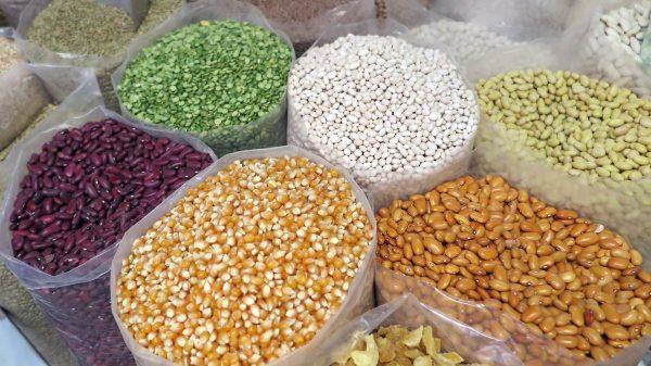 grain, corn, beans