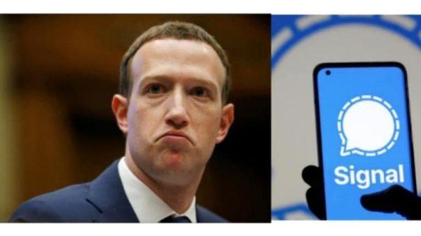 Zuckerberg Signal