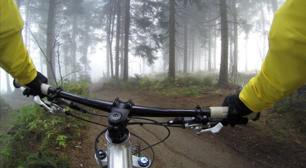 cycling, handlebars, woods
