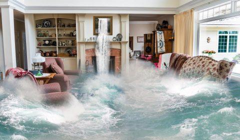 flooding, surreal, living room