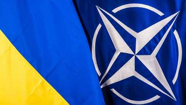 Ukraine Nato Flags