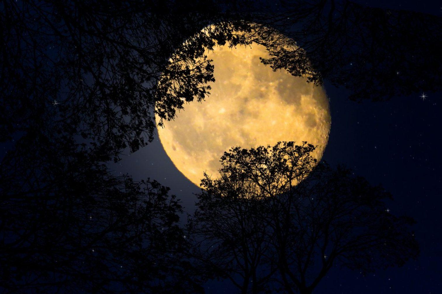 viziunea lunii