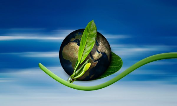 earth, globe, birth