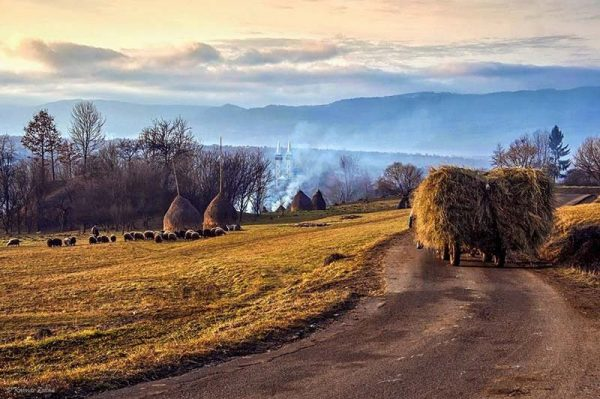 Breb Village Carriage