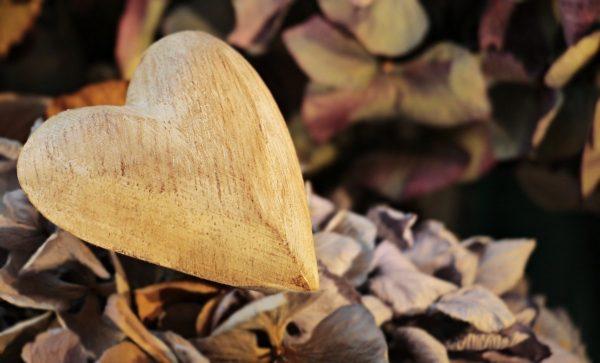 heart, wooden heart, wood