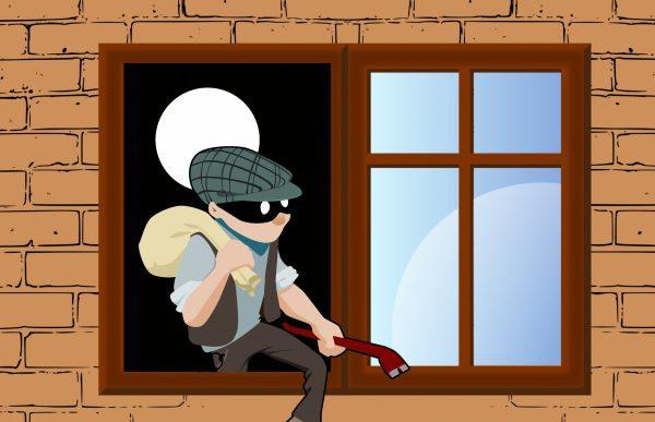 thief, steal, house